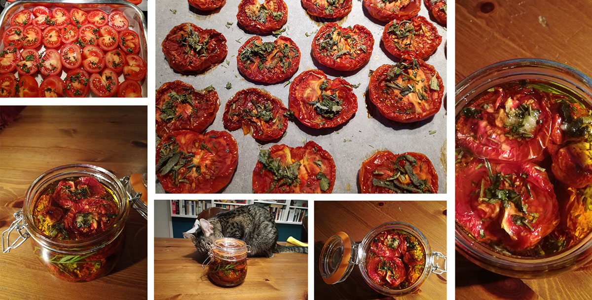 kollage getrocknete tomaten