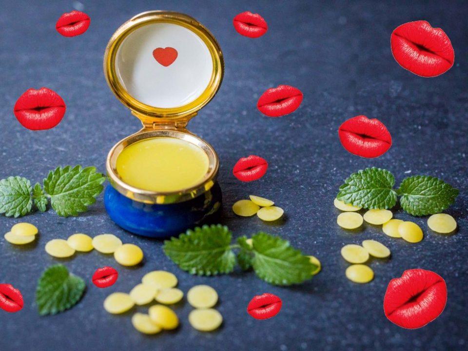 Bio Lippenbalsam Olivenöl für die Lippen Florence Stoiber NOAN